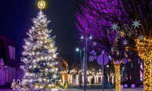 Чудесное фото: Огре в красивом праздничном декоре